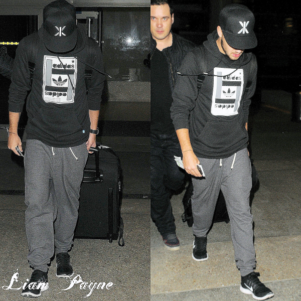 06.03 - Liam et Louis ont été vue en arrivant à l'aéroport de LAX.