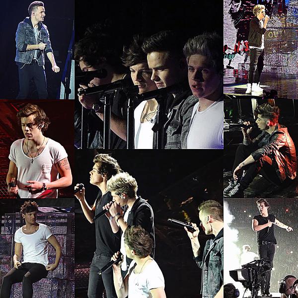 Flash-Back - 29 et 30.04.2013 - Les One Direction faisant leurs concert à Paris et Amnéville pour le TMHT.