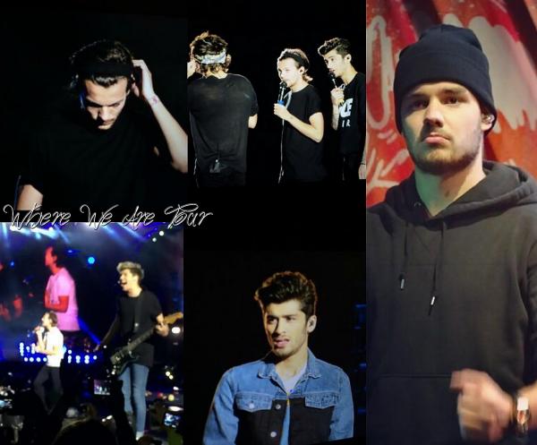 01.05 - Les One Direction interprétant leurs quatrième concert pour tournée le Where We Are Tour au stade Santiago au Chili.