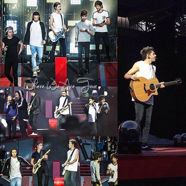 16.06 - Les One Direction interprétant leurs vingt-quatrième concert pour tournée le Where We Are Tour au stade Parken à Copenhague au Danemark.