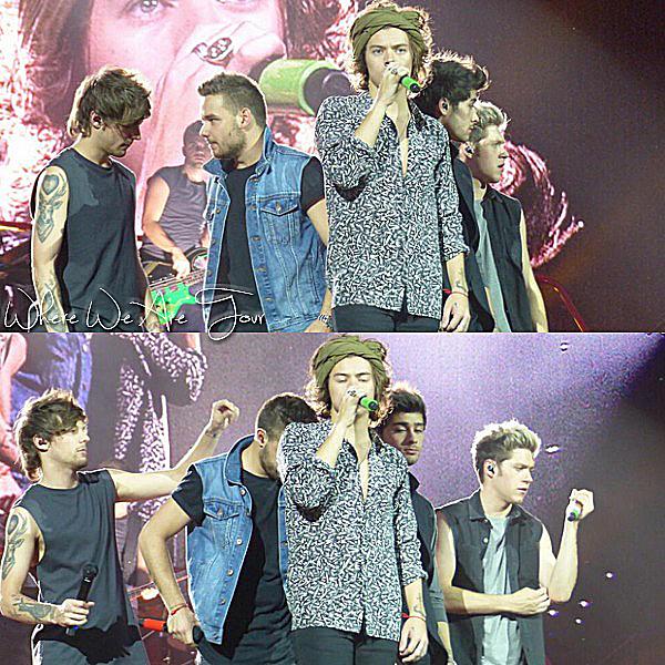 25.06 - Les One Direction interprétant leurs vingt-huitième concert pour tournée le Where Are Tour au stade de Amsterdam.