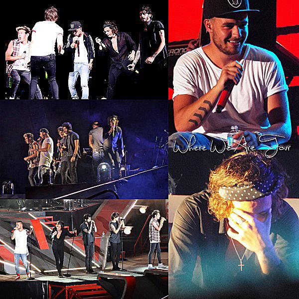 01.08 - Les One Direction interprétant leurs trente-neuvième concert pour tournée le Where Are Tour au stade de Toronto au Canada.