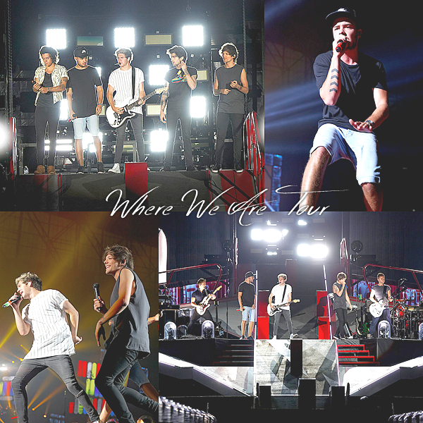 16.08 - Les One Direction interprétant leurs quarante-septième concert pour la tournée Where We Are au stade Ford Field à Detroit à Michigan.
