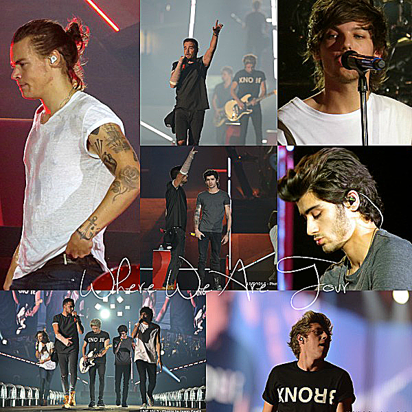 16.09 - Les One Direction interprétant leurs cinquante huitième concert pour la tournée Where We Are au stade Phoenix en Arizona.