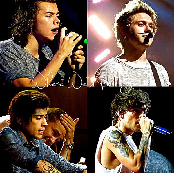 28.09 - les One Direction interprétant leurs soixante-quatorzième concert pour la tournée Where We Are au stade de Pavillon de musique à Charlotte.