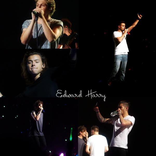 28.02 - les One Direction interprétant leurs onzième concert pour tournée le On The Road Again à Tokyo au Japon.