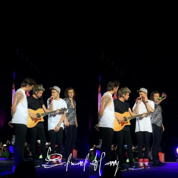 29.03 - Les One Direction interprétant leurs vingt-et-unième concert pour tournée le On The Road Again à Johannesburg en Afrique du sud.