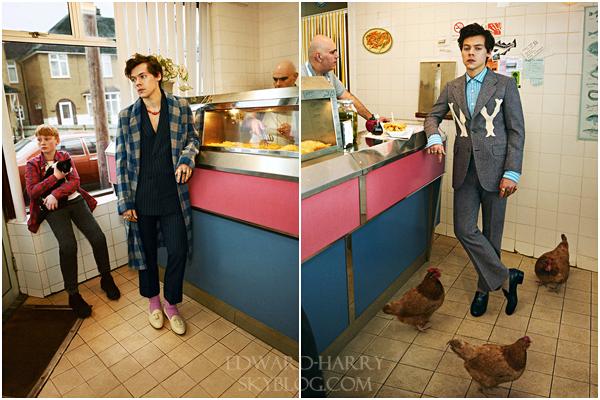 Harry pour la marque Gucci automne/hier 2018 :