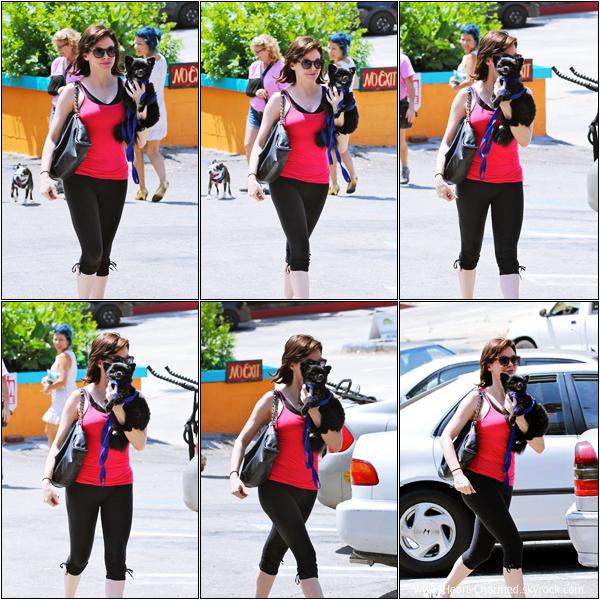 -    02/07/2013 : Rose quittant un supermarché avec son chien Sasquatch à Los Angeles.  -
