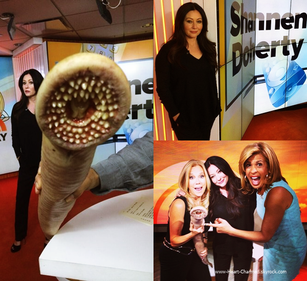 -    19/05/2014 : Shannen assistant à l'émission The Today Show.  -