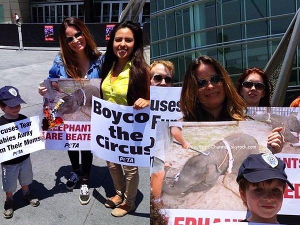 -    09/07/2014 : Holly et son fils assistant au Peta-ElephantsNeedUS à Los Angeles.  -