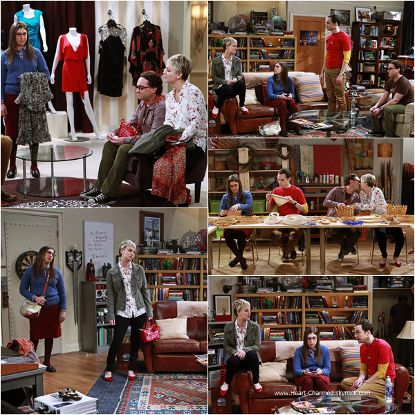 -    The Big Bang Theory : Découvrez ci-dessous les stills de l'épisode 8x12 de The Big Bang Theory intitulé The Space Probe Disintegration.  -