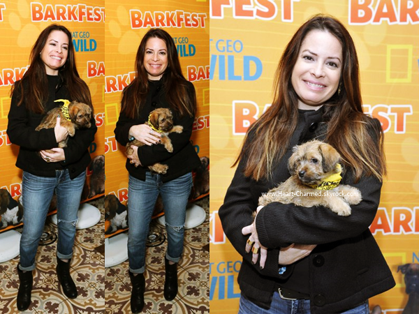 -    09/04/2016 : Holly assistant au National Geographic Channel's Barkfest Brunch à Los Angeles.  -