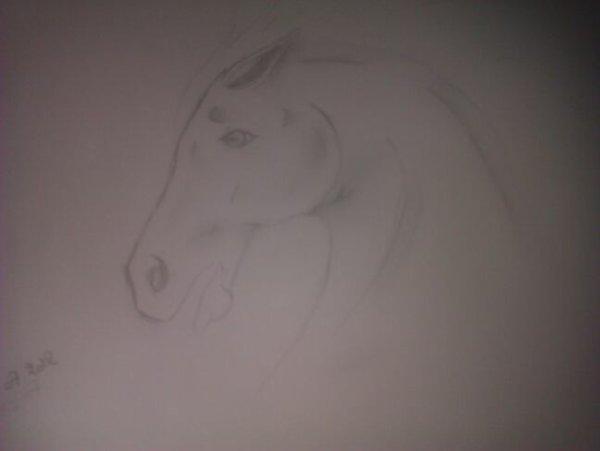 Un cheval pris par la peur et la panique