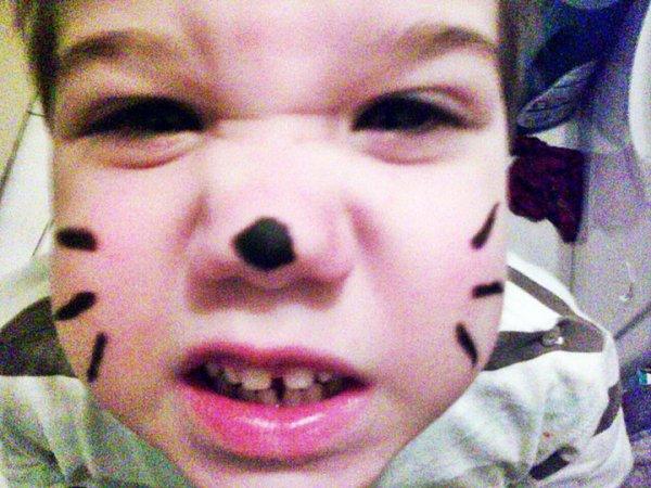 Sobrino #Gato #Guapo ♥