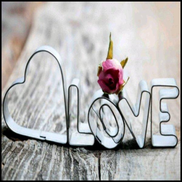 Aimer la vie...profiter à fond