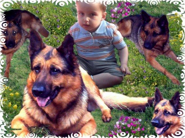 une création de mon petit garçon que j aime pour la vie et notre chien que on aime aussi pour la vie car maman et papa on t aime anthony et notre chien aussi on laime bonne visite