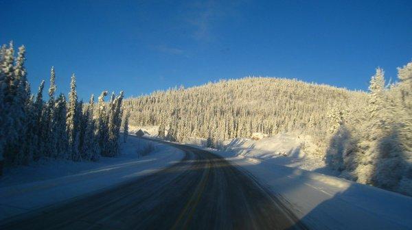 Petit Road TRIP