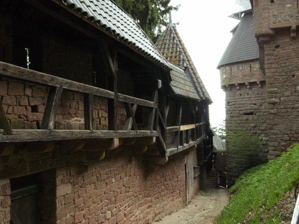 MES CHATEAUX FAVORIS : HAUT-KOENIGSBOURG