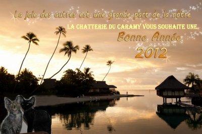 BONNE ANNEE 2012 !!