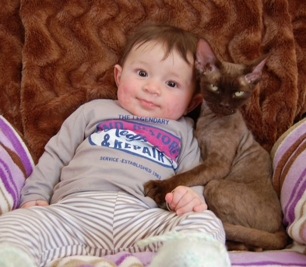 Amour entre Bébé humain et chatonne  !
