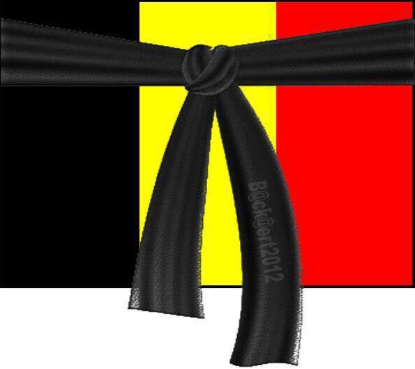 Solidarité avec la Belgique ...Hommage aux victimes . Haine contre ces assassins et ceux qui les protegent