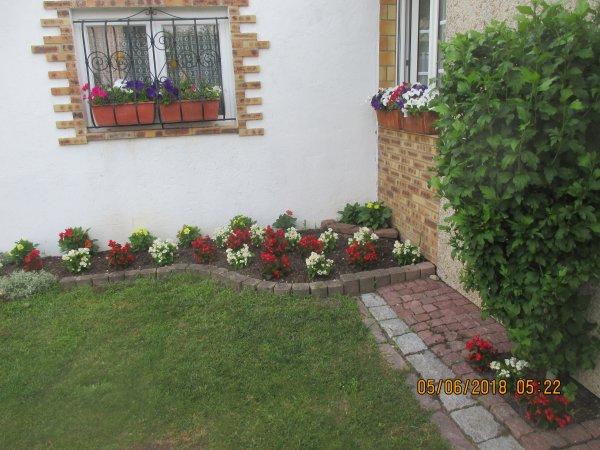 Quelqueds fleurs en ce jardin ...