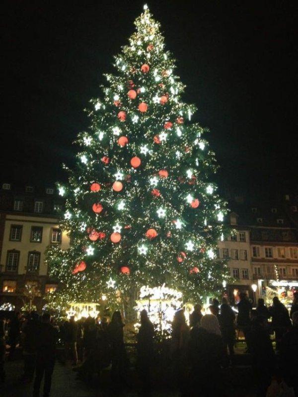 Ca y est il est pret pour l'innauguration bientot du Marché de Noel de Strasbourg