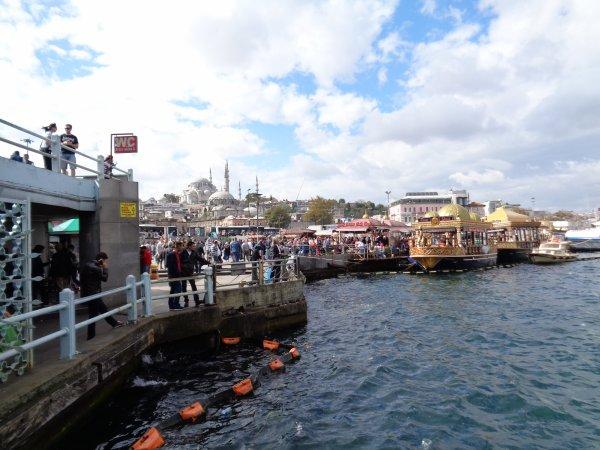 Turquie, Istamboul, sur le Bosphore  - Bravo nono jaguar papi dany