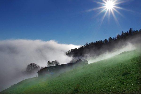 ...le printemps se prépare doucement en Alsace ...