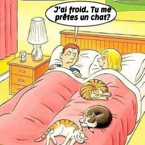 Humour pour catophiles...
