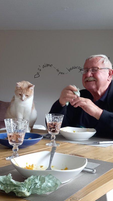Raymond , le chat de ma fille m'a enfin adopté apres plusieurs mois de tentatives infructueuses....Il ne quitte pas des yeux mon verre de rosé!!!..