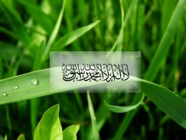 No God, But Allah . Muhammad is the Messenger of Allah ( messenger of the god )