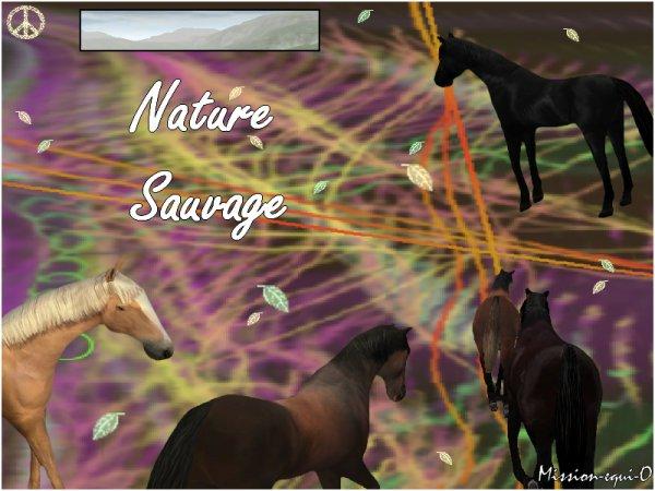 Nature sauvage.