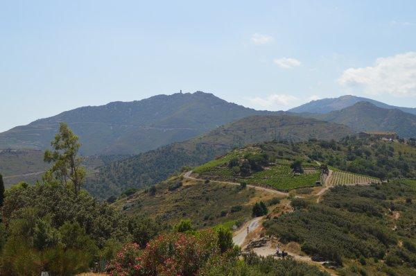 Arrière pays de Collioure