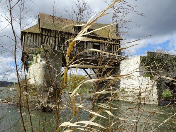 Le Vieux Moulin derrière des herbes (2/2)