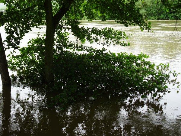 Vernon inondation juin 2016 (8/97)