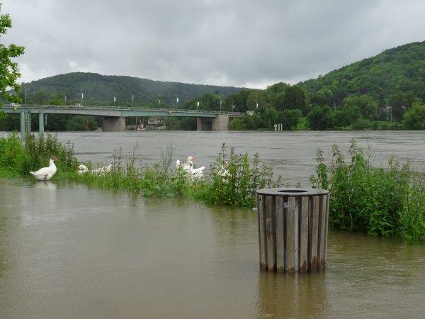 Vernon inondation juin 2016 (17/97)