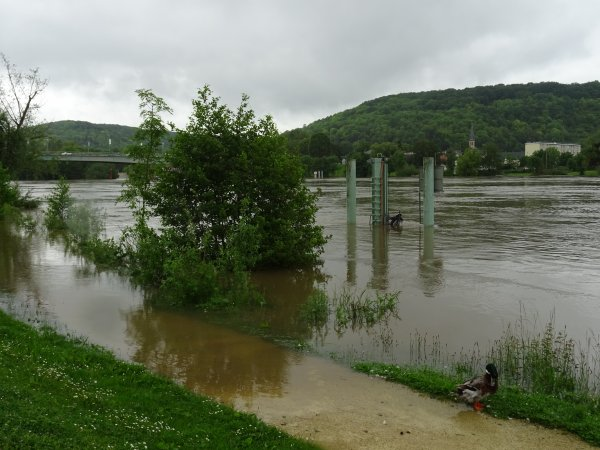 Vernon inondation juin 2016 (24/97)