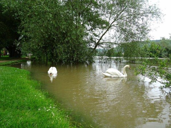 Vernon inondation juin 2016 (38/97)