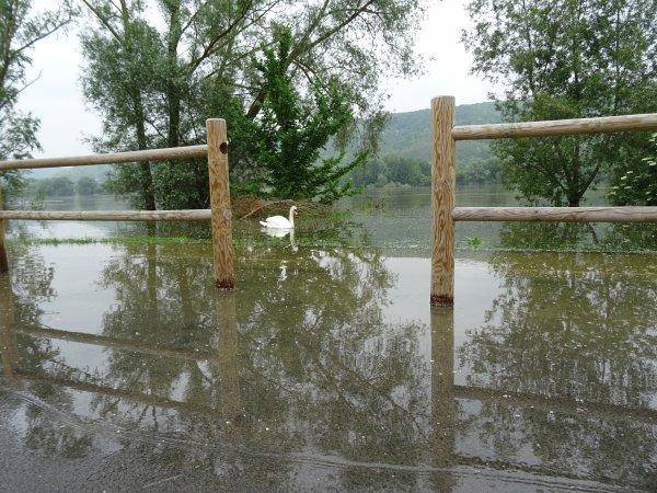 Vernon inondation juin 2016 (56/97)