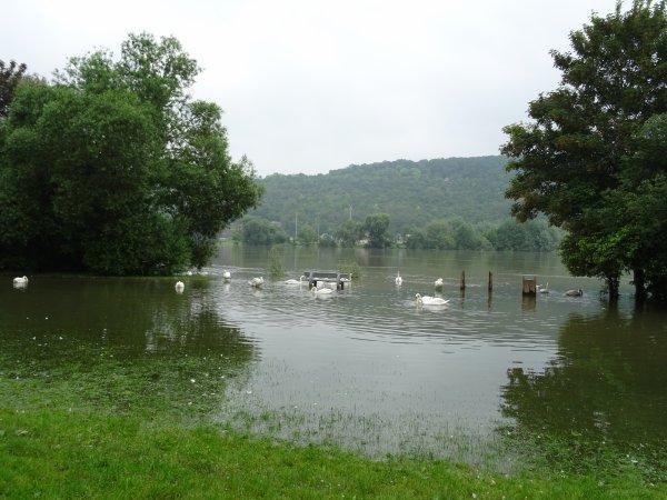 Vernon inondation juin 2016 (63/97)