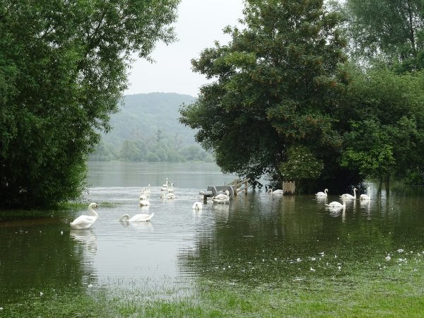 Vernon inondation juin 2016 (64/97)