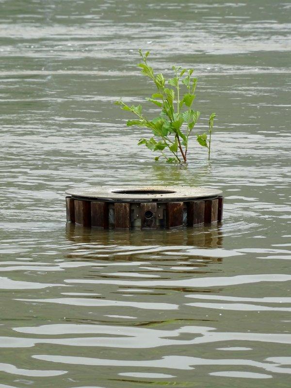 Vernon inondation juin 2016 (73/97)