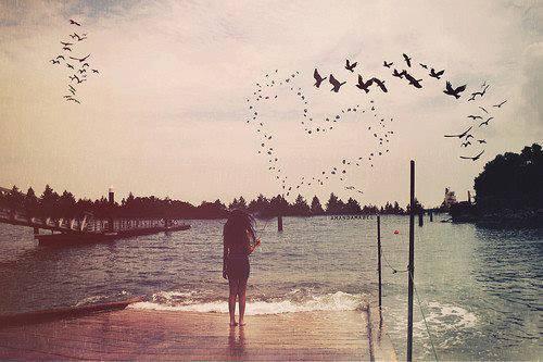 Les sentiments ne s'en vont pas, les personnes si.♥