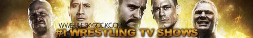 WWE Elimination Chamber 17/02/13