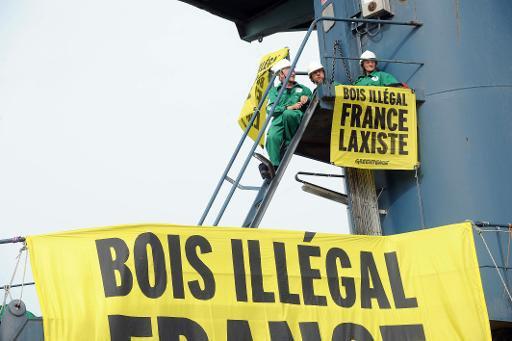Honteux : Greenpeace bloque en France le bois issu de contrebande organisé dans un pillage de masse par le clan Kabila