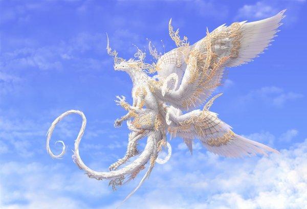ma forme dragon