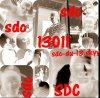 sdc-du-13
