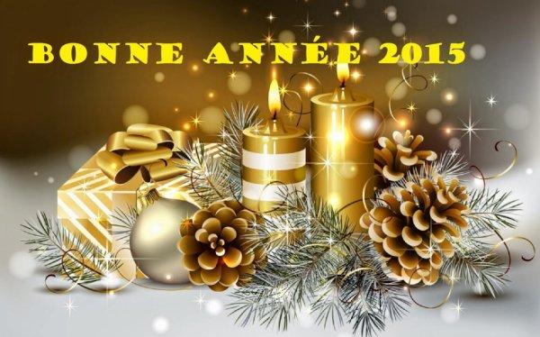 Bonne année 2015 à tout le monde ❤️
